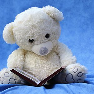 toy bear reading a book